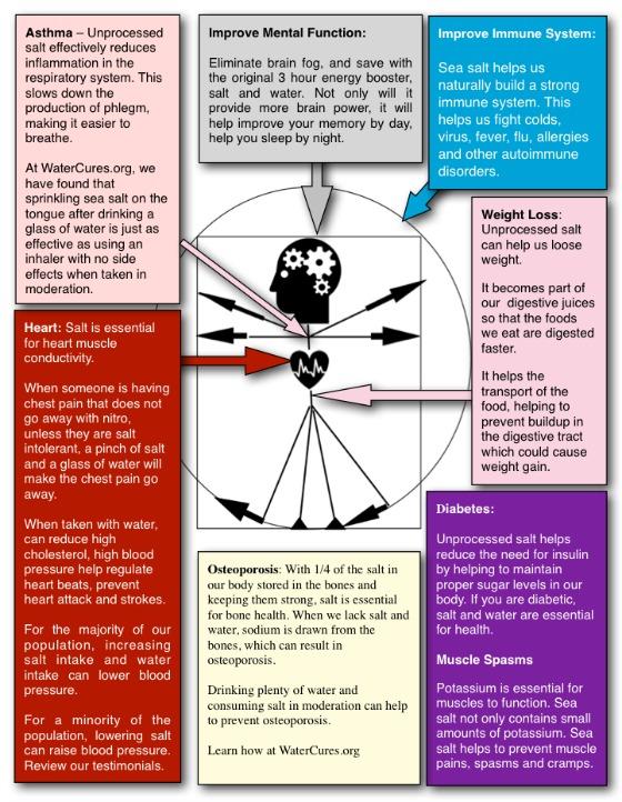 Benefits of Salt Infographic